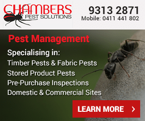 Termite Treatment in Perth