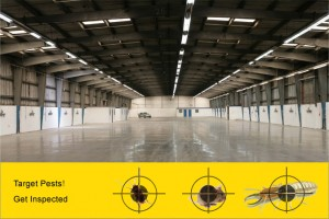 industrial pest inspections