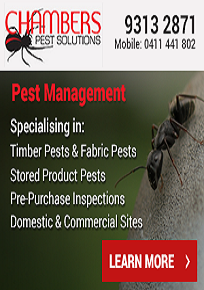 Look For An Insured pest control Company