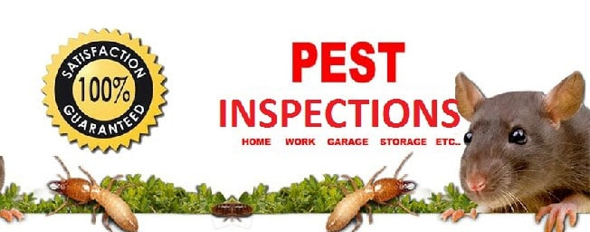 pest inspection Perth