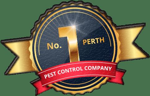 no 1 perth pest control company